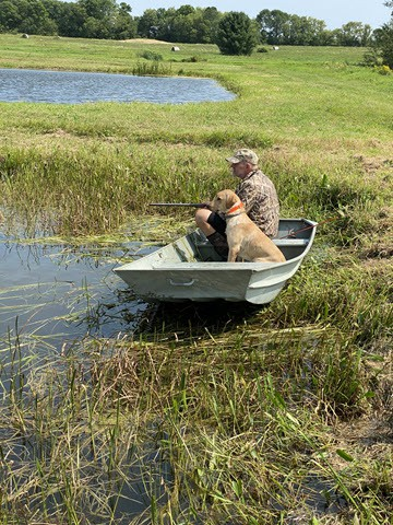 Essential equipment for training a duck dog