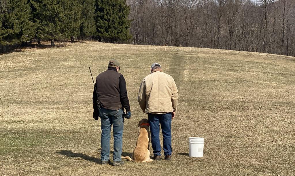 one on one dog training
